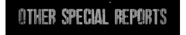 otherSpecialReportsMEtalSmallHeader